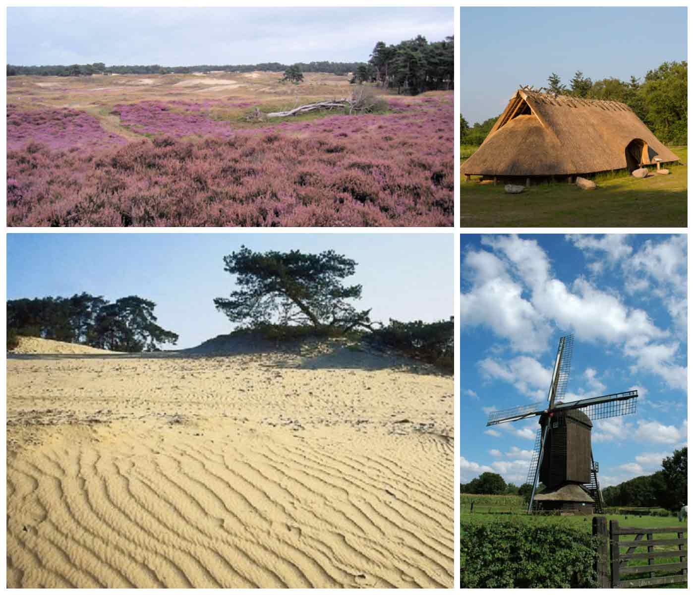 Wekeromsezand.Doesburgermolen.Celtic Fields